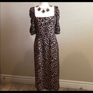 Zara Basic Leopard Midi Dress
